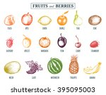 Vector Illustration Fruits And...