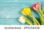 Fresh Spring Tulips Background...