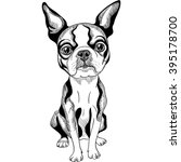 vector black and white serious... | Shutterstock .eps vector #395178700