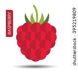 raspberry vector illustration | Shutterstock .eps vector #395219809