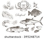 vector hand drawn fish and...   Shutterstock .eps vector #395248714