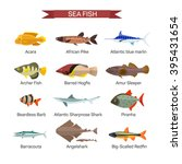 Fish Vector Set In Flat Style...