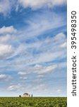 chapel and clouds in vinyard... | Shutterstock . vector #395498350