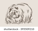 bear vector  hand draw sketch  | Shutterstock .eps vector #395509210