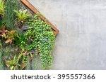 vertical garden in a wooden...   Shutterstock . vector #395557366