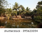 Baidyapur  India   December 02...