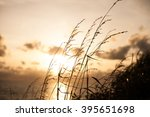 field of the ripened wheat on a ... | Shutterstock . vector #395651698