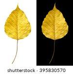 gold pho. bodhi leave. bodhi...   Shutterstock . vector #395830570