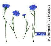 cornflowers field wild flowers... | Shutterstock .eps vector #395920876