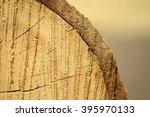 cross section of tree trunk   Shutterstock . vector #395970133