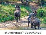 chiang mai  thailand   february ... | Shutterstock . vector #396091429