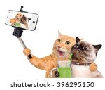 Cats Taking A Selfie With A...