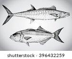 King Mackerel And Bluefish....