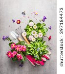 Gardening Tools With Fresh...