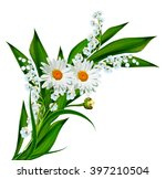flowers lily of the valley....   Shutterstock . vector #397210504