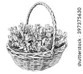beauty hand drawn basket of... | Shutterstock .eps vector #397375630