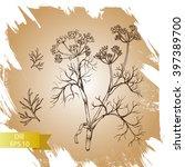 vector background sketch herbs  ... | Shutterstock .eps vector #397389700