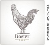 rooster in graphic style  hand... | Shutterstock .eps vector #397407466