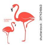 flamingo. exotic birds on white ... | Shutterstock .eps vector #397424863