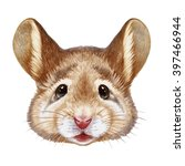 portrait of mouse. hand drawn... | Shutterstock . vector #397466944