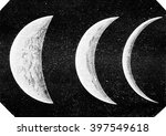 various aspects of venus ... | Shutterstock . vector #397549618