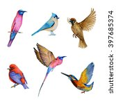 watercolor set of bird  flying... | Shutterstock . vector #397685374