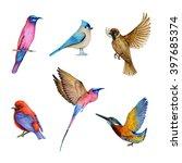 watercolor set of bird  flying... | Shutterstock . vector #397685374