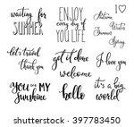 lettering photography overlay... | Shutterstock .eps vector #397783450