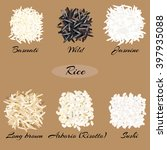 different types of rice ... | Shutterstock .eps vector #397935088