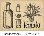 glass and bottle of tequila.... | Shutterstock .eps vector #397983514