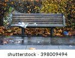 Wooden Park Bench With Wet...
