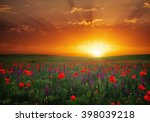 beautiful landscape with nice... | Shutterstock . vector #398039218