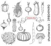 farm corn cob and onion  pepper ... | Shutterstock .eps vector #398049490