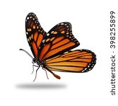 Stock photo beautiful monarch butterfly isolated on white background 398255899