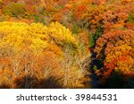 Riot of fall colors in a forested gorge - stock photo