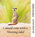 Small photo of A concept picture of a meerkat claiming that he is so perfect or dangerous people should be warned about him