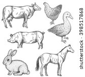 farm collection. hand drawn...   Shutterstock .eps vector #398517868