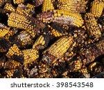 Small photo of Moldy corn background, Aflatoxin - Aspergillus flavus and Aspergillus parasiticus