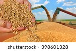 wheat grain in a hand after... | Shutterstock . vector #398601328