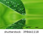 green leaf with water drops...   Shutterstock . vector #398661118