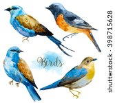Stock photo watercolor bird set of isolated illustration on a white background a little blue bird illustration 398715628