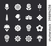 flower icons set. modern thin... | Shutterstock .eps vector #398896258