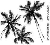 tropical vector background....   Shutterstock .eps vector #399000304