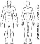 human figure   clip art  ...   Shutterstock .eps vector #399053419