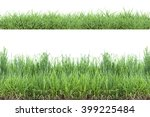 green grass  isolated on white... | Shutterstock . vector #399225484