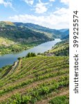 Landscape Of The Douro River...