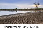 Drought  In Kruger National...