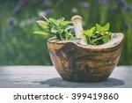 fresh herbs  basil  peppermint... | Shutterstock . vector #399419860