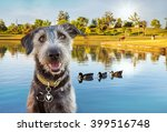 happy and smiling dog in front... | Shutterstock . vector #399516748