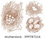 set off nests with eggs   hand... | Shutterstock .eps vector #399787216